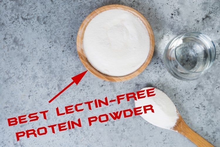 best lectin-free protein powder